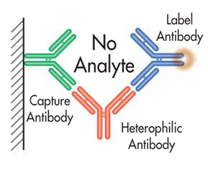 Antibodies - BlockingNeutralization Methods, Techniques, Protocols, elisa, pcr, cell culture2